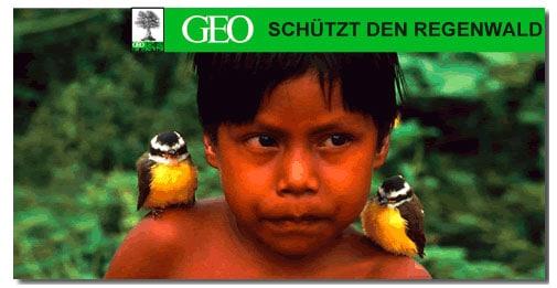 Geo Regenwaldaktion