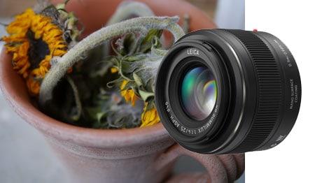 Praxisbilder Panasonic Leica 1,4 25 mm