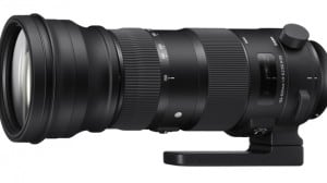 photokina 2014 – Sigma 150-600 mm in zwei Versionen