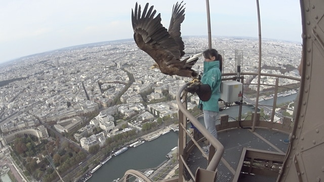 sony_actioncam_paris