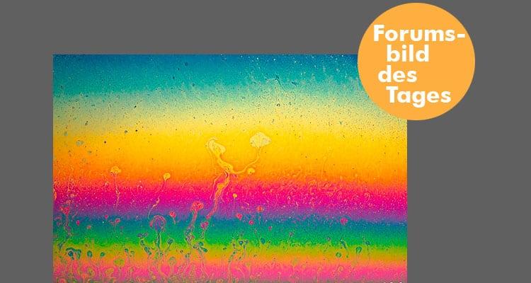 forumsbild 16-01-02