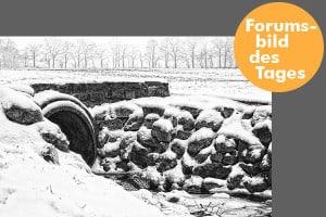 forumsbild 16-01-08