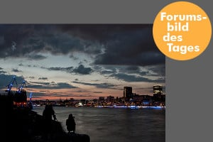 Forumsbild des Tages 0203