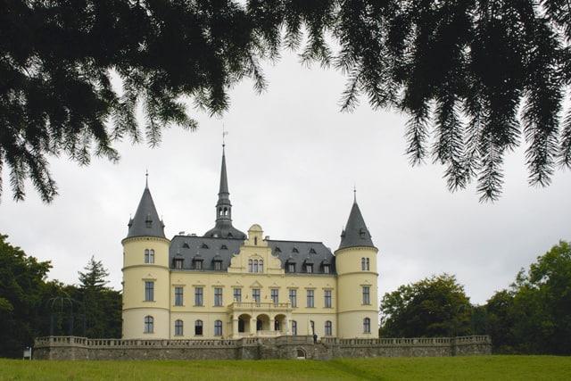 Bild 4 - Rügen/Ralswiek - Nadelbäume als Einrahmung