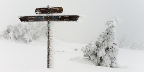 foto_im_winter_teaser_neu