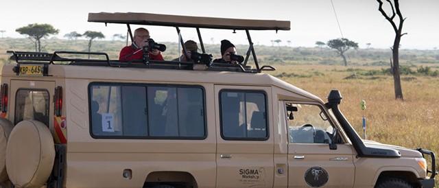 sigma_safari
