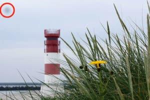 Foto mit Sensorfleck