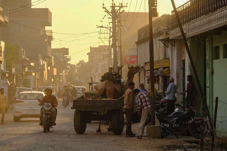 Delhi - Nawalgarh