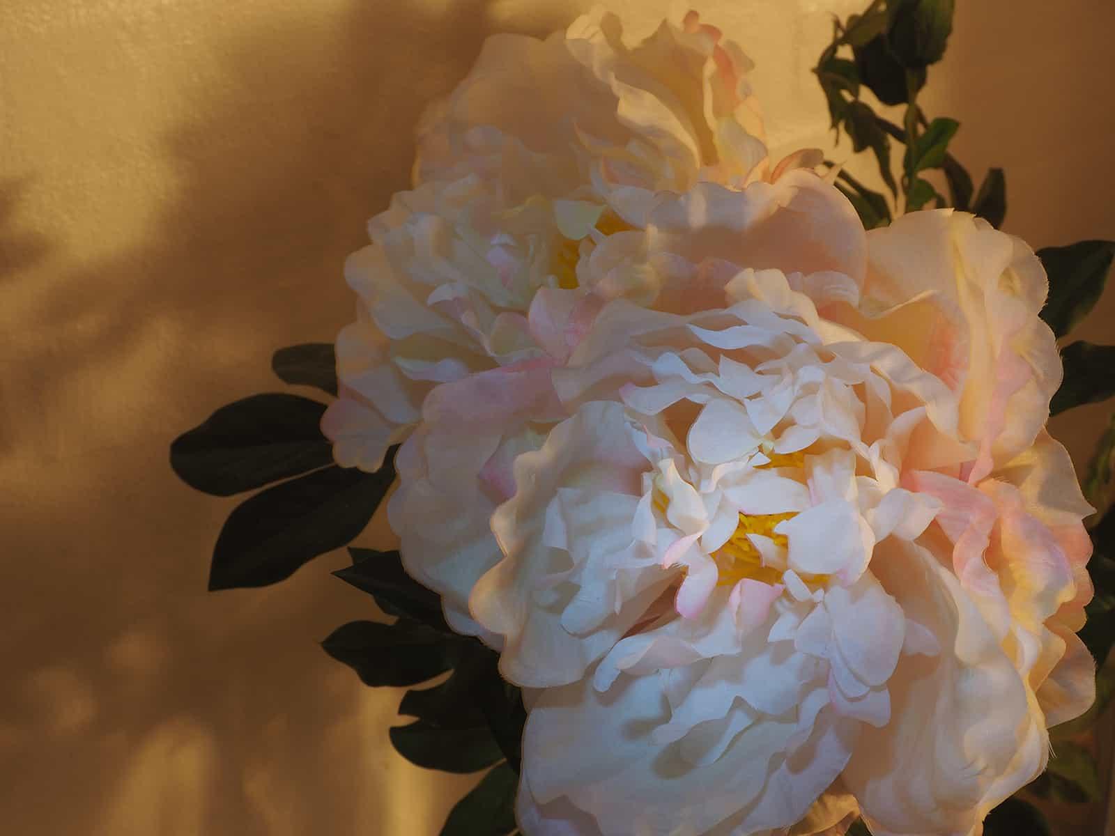 Künstliche Blume. Kamera: Olympus PEN-F