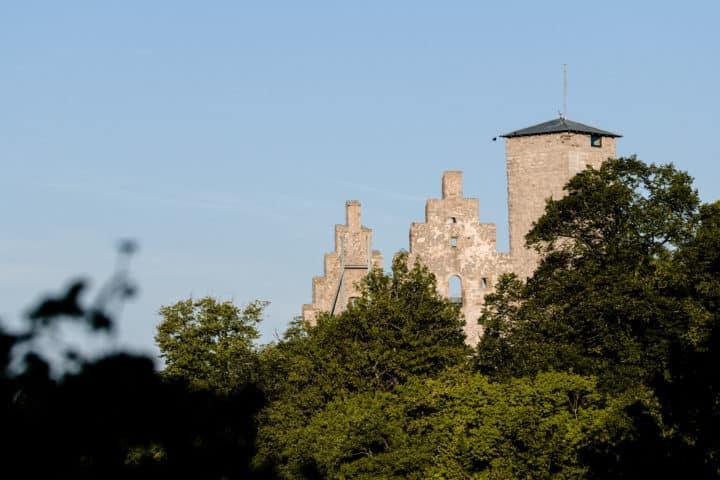 Ruine Trimburg