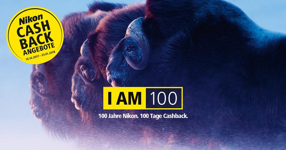Nikon Cashback Anzeige