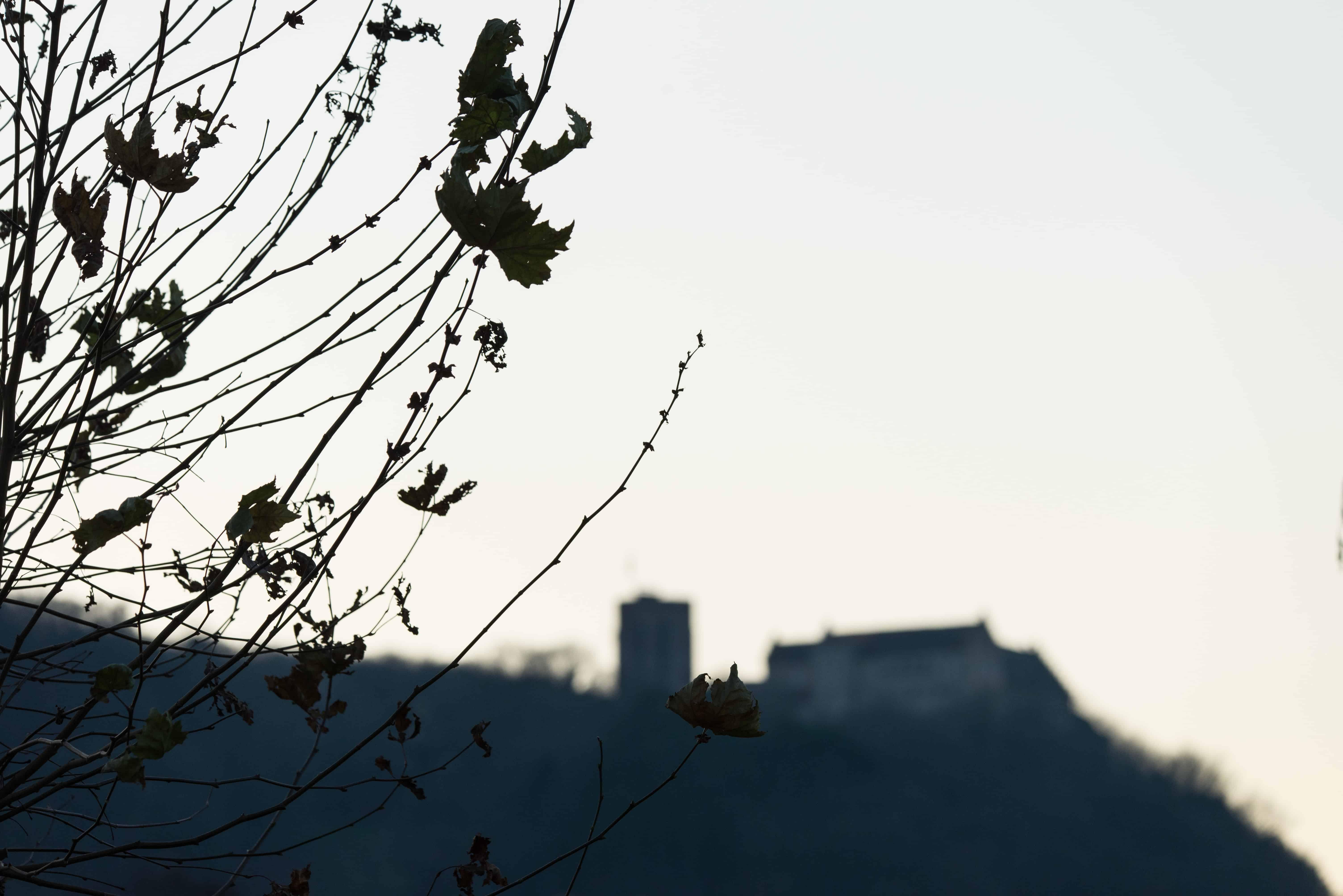 Schloss Saaleck bei Hammelburg, Objektiv: Sigma 100-400 mm Contemporary
