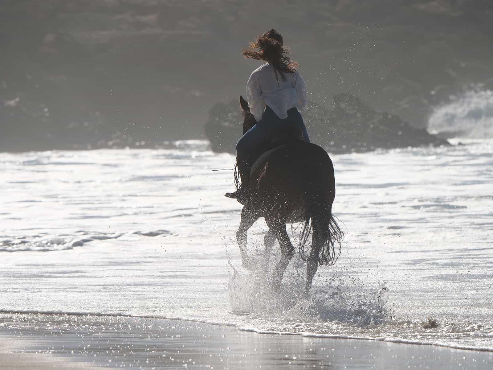 Reiterin im Meer