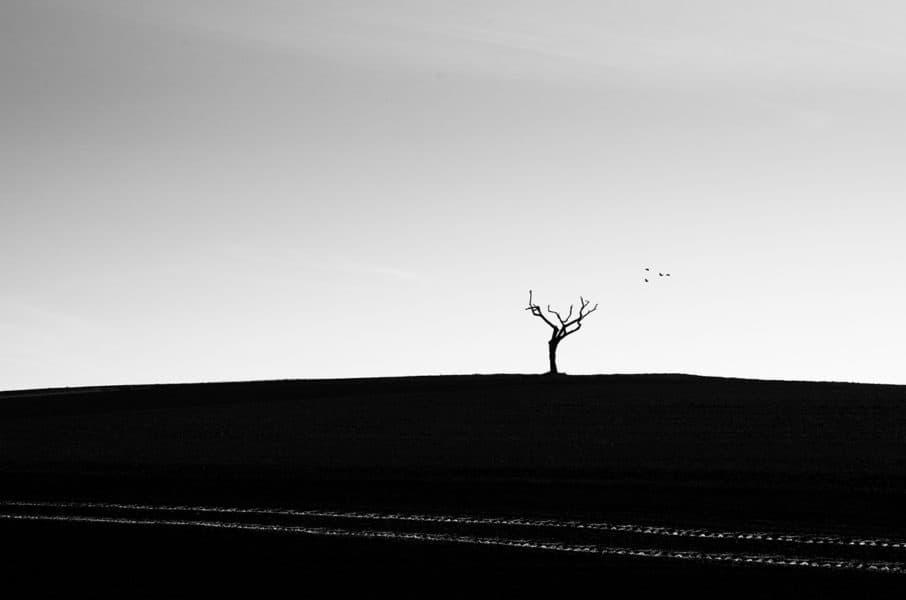 """Hildegard Kalliski, """"Treffpunkt"""" Nikon D750"""