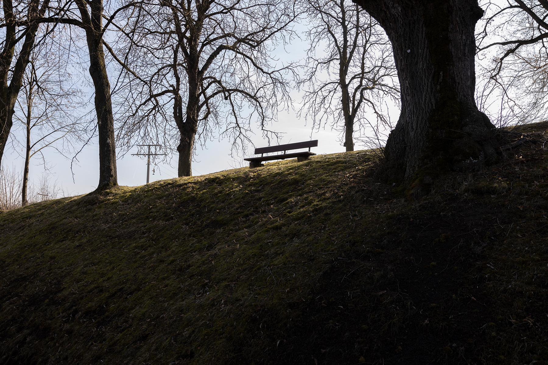 Bank unter Bäumen fotografiert mit Sigma 24-70 mm Arts