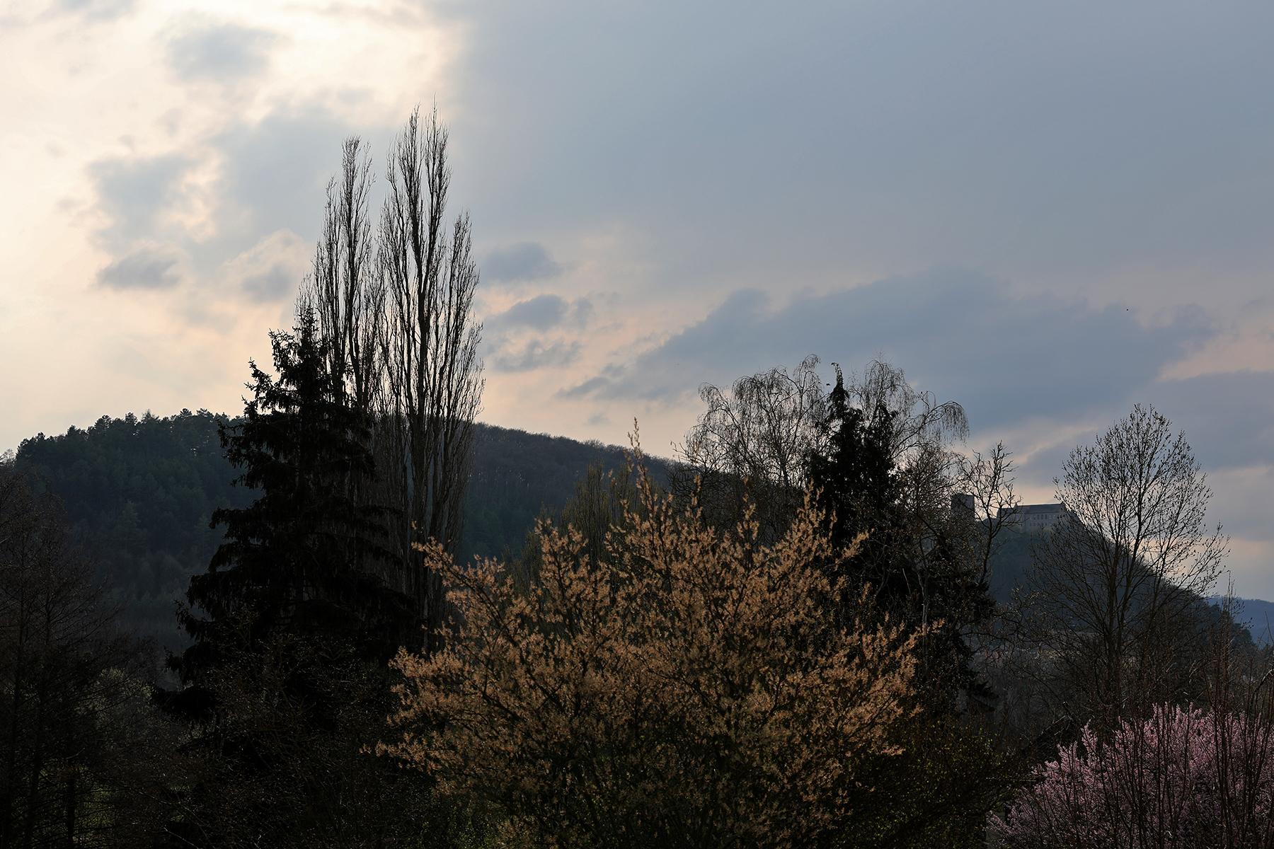 Schloss Saaleck hinter Bäumen fotografiert mit dem Sigma 70-200 mm Sports