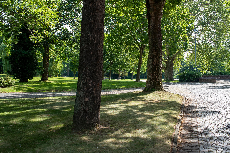 Park aufgenommen mit Tamron SP 35 mm F1.4