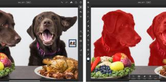 Photoshop iPad Selection