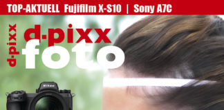 d-pixx 04/2020